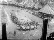 COLLECTIE TROPENMUSEUM Mensen hebben zich verzameld rond geslachte varkens op het dorpsplein Nias TMnr 10001059