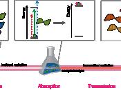 Spectroscopy terms
