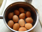 A dozen boiled eggs with lion marks visible in a saucepan.