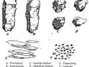 soil structure (Dutch version)