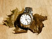 Slow Time in Wrist Watch on Dry Leaf