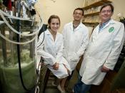 biofuel Mullin lab