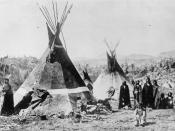 Typical dwellings of the Shoshone Indians during the late 19th century.