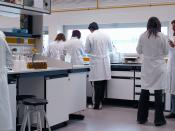 Scientists in a laboratory of the University of La Rioja.