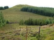 English: Highest top, Shieldgreen Kipps The 587m summit is named Shieldgreen Kipps; one of the Glentress bike trails crosses it.