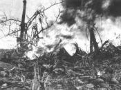 English: A Marine fighting on Guam uses flamethrowers against Japanese positions on Adelup Point.
