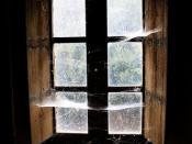 Attic Cobwebs