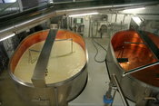 During industrial production of Emmental cheese, the as-yet-undrained curd is broken by rotating mixers.