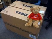 Bertie (phpBB's mascot) sitting on their new servers we just got :-)