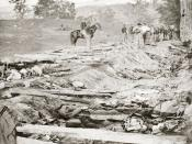 English: Battle of Antietam, 1862; Confederate dead at Bloody Lane, looking northeast from the south bank; the Union soldiers looking on were likely members of the 130th Pennsylvania, who were assigned burial detail