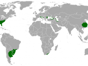 English: Humid subtropical climate zones of the world.
