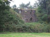 Ruins near Ralegh's Cross, Somerset