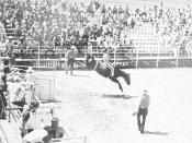English: Parchman Prison Rodeo