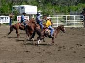 English: Rodeo in Westaskiwin, Alberta, Canada; 2005