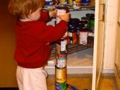 English: Subject: Quinn, an ~18 month old boy with autism, obsessively stacking cans. Date: Late 2002. Place: Walnut Creek, California. Photographer: Andwhatsnext. Scanned photograph. Credit: Copyright (c) 2003 by Nancy J Price (aka Mom). This is an edite