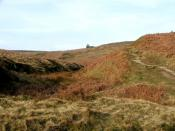 English: The Climb to Top Withens. Thought to be the inspiration for the Earnshaws home in Emily Brontes' novel 'Wuthering Heights'.