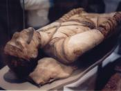 Tubercular decay has been found in the spines of Egyptian mummies. Pictured: Egyptian mummy in the British Museum.