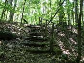 Landon Bay, Donavon Trail