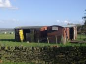 English: Farmers railway carriages. A couple of old railway goods carriages that the farmer uses to provide some shelter for his sheep. Where do farmers get them from and how much do they cost? They all seem to favour them. There is no railway nearby.