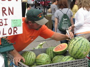English: A farmer/vendor marking prices on melons, Lansing Farmers Market, Michigan, September 2010 - Photograph by Patty Mooney of San Diego, California