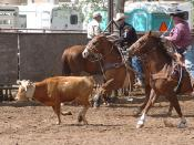 U.S. Army Wounded Warrior Sports Program - Team Roping - 10 May 2008 -  Las Cruces - New Mexico - FMWRC