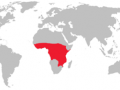English: A distribution of the Tsetse fly.