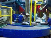 Belt Conveyor systems at a Packing Depot