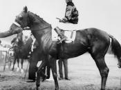 Sir Barton and jockey Johnny Loftus, 1919 Preakness Stakes