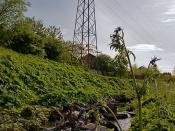 English: Niddrie Burn. Niddrie Burn flows from the Braid hills down to the Firth. Here it runs between housing schemes in The Jewel and Brunstane area where there appears to be problems with local environmental issues; there is a restoration project being