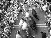 English: Running of the bulls during Sanfermines in Iruñea - Pamplona, Spain. Español: Encierro con toros durante los Sanfermines de Pamplona, España