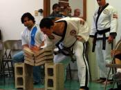 Four concrete paving bricks broken with a knife-hand strike. Breaking techniques are often practiced in taekwondo