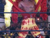 WWE wrestler Hulk Hogan