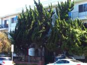 English: Photo of the apartment building at 1012 Third Street, Santa Monica, California, where James
