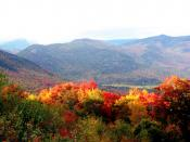English: the forests in new hampshire in autumn