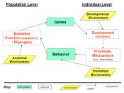 New behavioral diagram