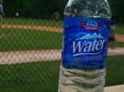 Publix bottled water with a baseball game in the background.