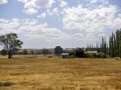 English: Drought-affected paddock in North Wagga.