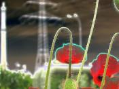 red poppy still life standing out against an industrial landscape