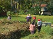 Bahasa Melayu: Gotong-royong di sawah padi