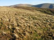 English: Bail Hill