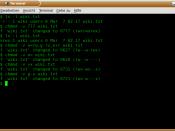 Screenshot von chmod (GNU coreutils)