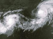 Tropical Storm Iniki (left) and Hurricane Orlean on September 8 at 0256 UTC. This image was produced from data from NOAA-12, provided by NOAA.