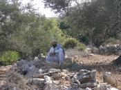 settler harassment