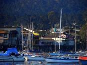 English: Monterey Harbor and Fisherman's Wharf, Monterey, CA