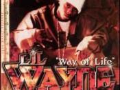 Way of Life (Lil Wayne song)