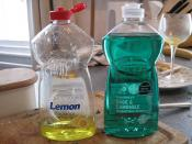 Tesco and Sainsburys own dishwashing liquid
