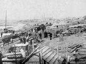 Frmer timber industry in Solec Kujawski1885