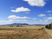 Fields outside Benambra, Victoria, Australia suffering from drought conditions.