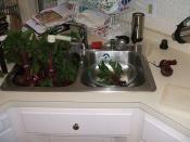 Bowl o' beet greens