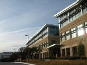 AMD Austin campus in late afternoon